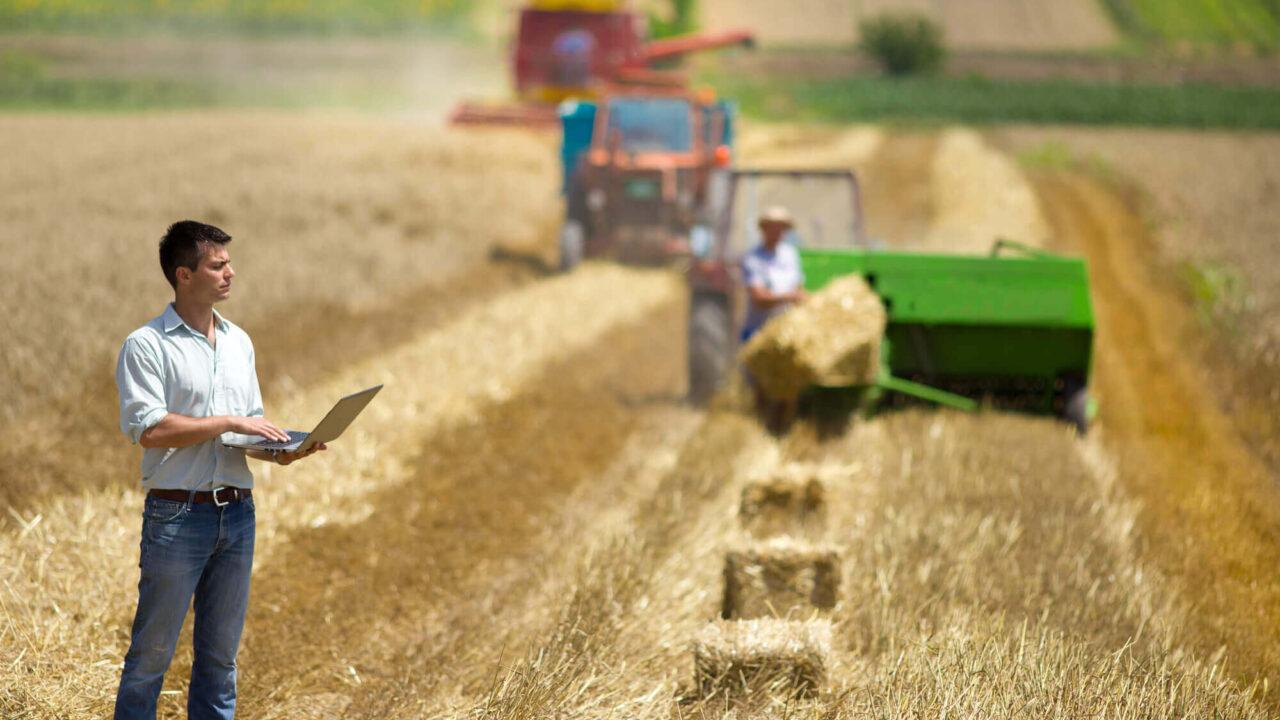 Gestão Agrícola: aprenda a ter mais lucro para a sua fazenda