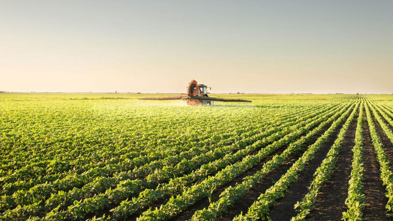 O que é Agronegócio: mercado, profissões e curiosidades