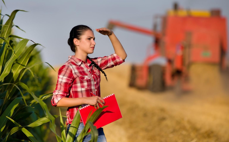 Conceitos da administração rural: aprenda como aplicá-los na sua fazenda