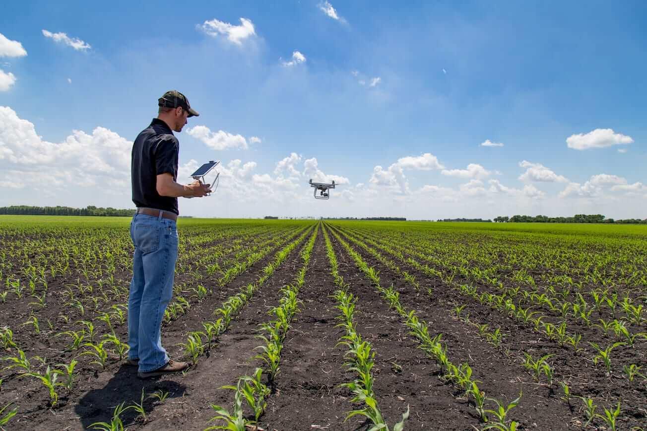 Empresas de software estão transformando o agronegócio