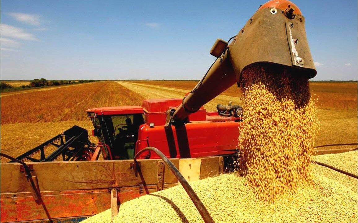 Produção agrícola: o Brasil como líder mundial