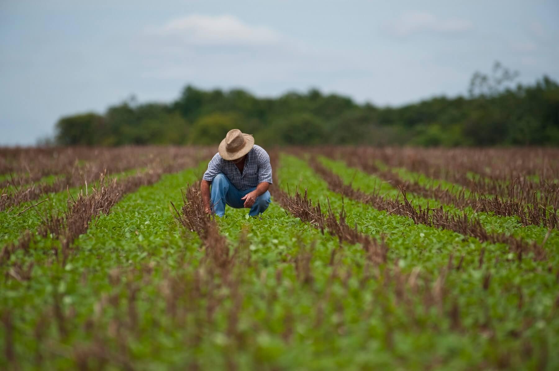 Qual é o perfil do produtor rural brasileiro?