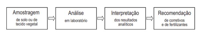 cálculo de adubação - passos fundamentais