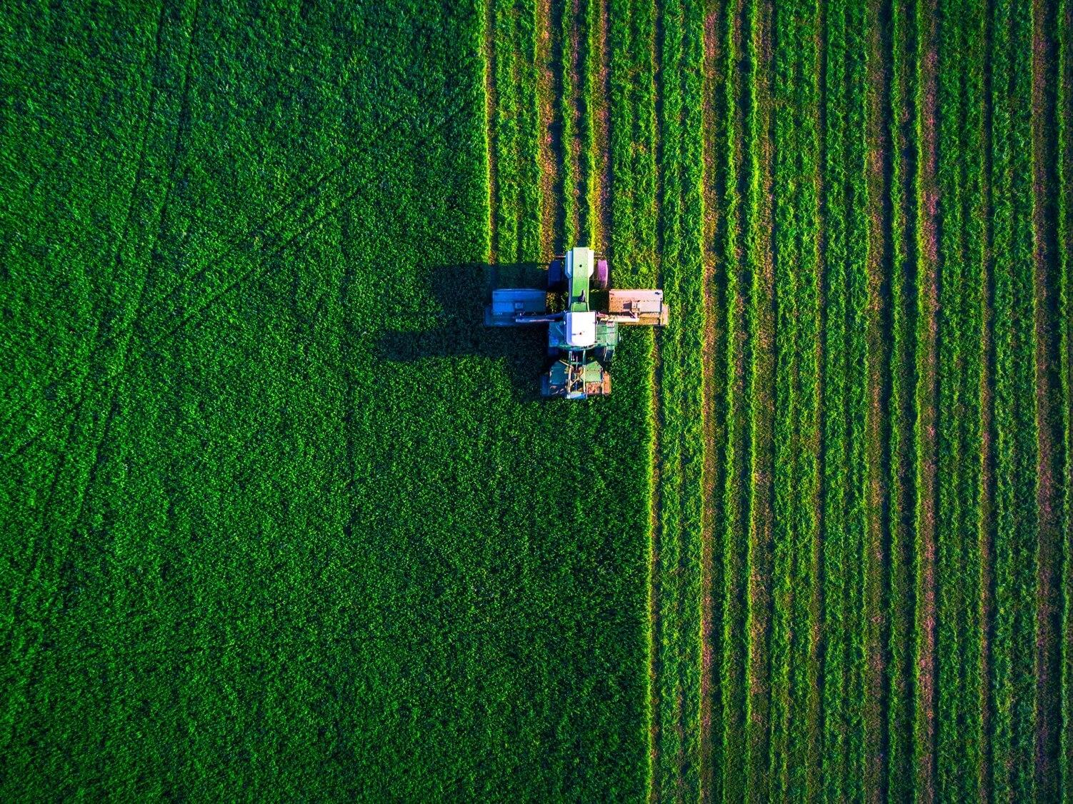 Mercado Futuro: saiba como funciona no Agronegócio