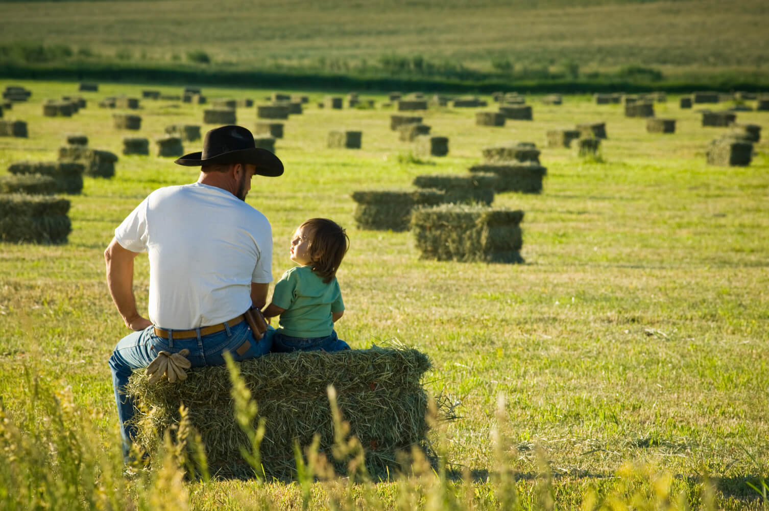 Os desafios da sucessão familiar em uma empresa rural