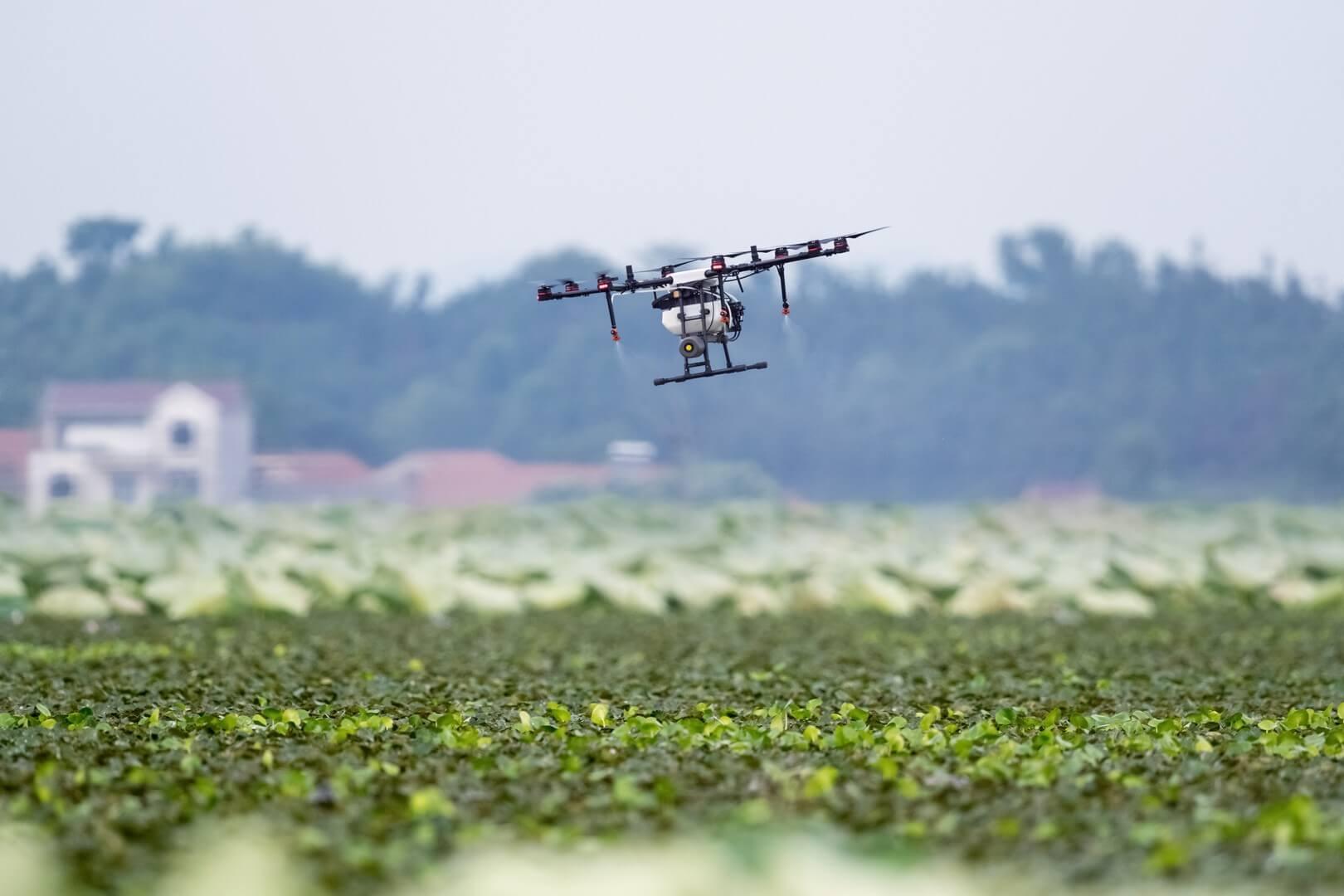 Agricultura de precisão: saiba o que é e como utilizar