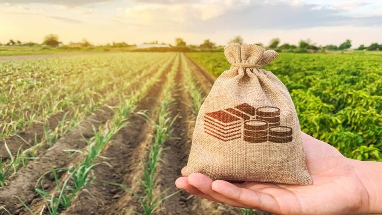 Planejamento rural: aumente a produtividade e o lucro da sua fazenda