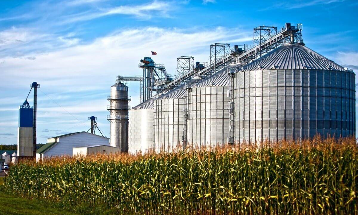 Armazenagem de grãos: saiba tudo sobre silos
