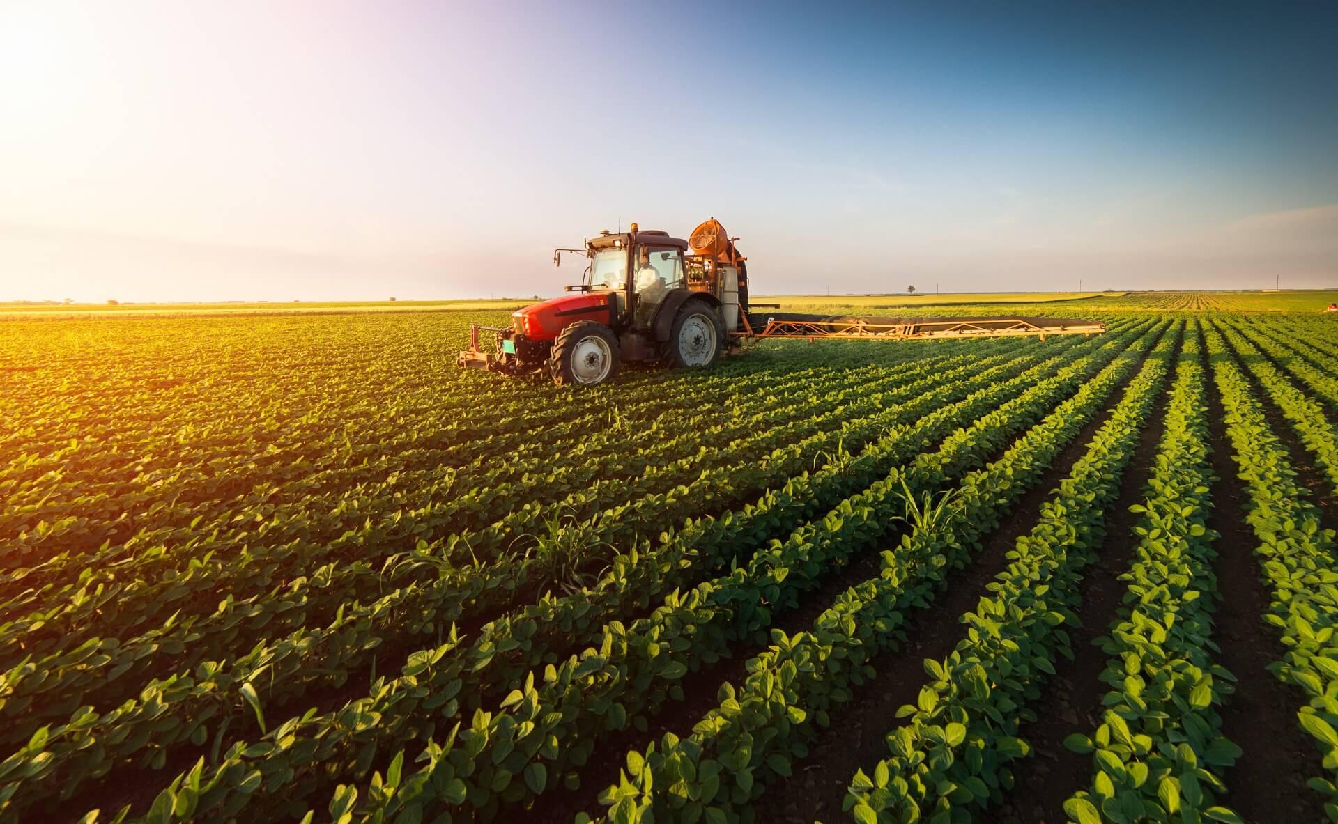 Agricultura no Brasil: história, desenvolvimento e as tendências para o futuro
