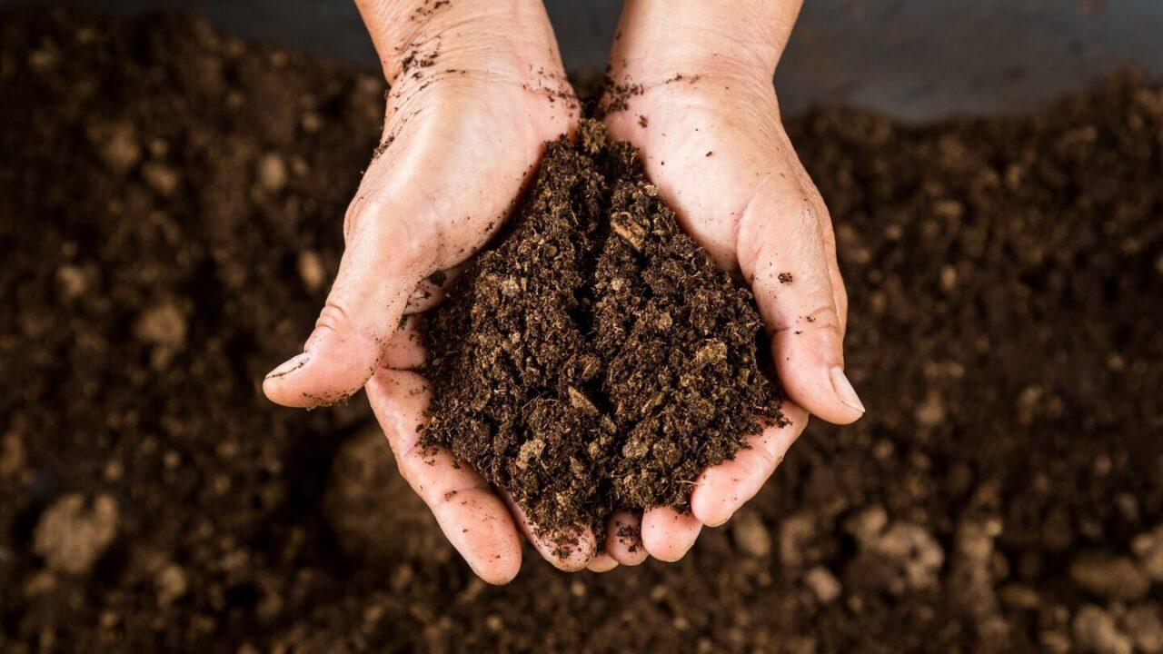 O que é um solo fértil?