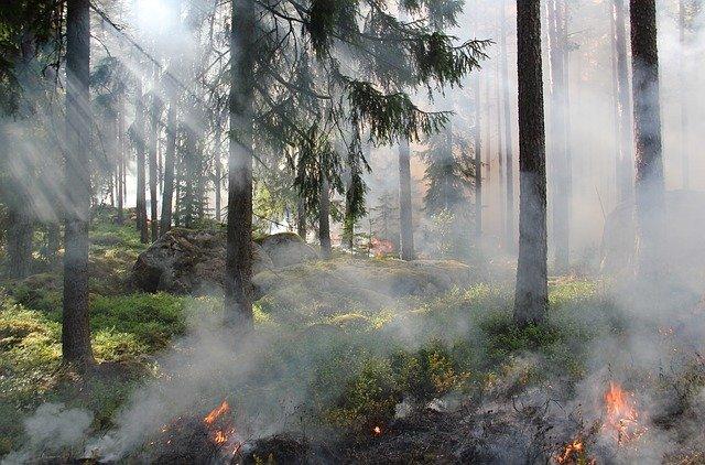controle de queimadas - ação que ajuda na sustentabilidade do agronegócio