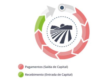 fluxo de caixa da fazenda - planejamento financeiro