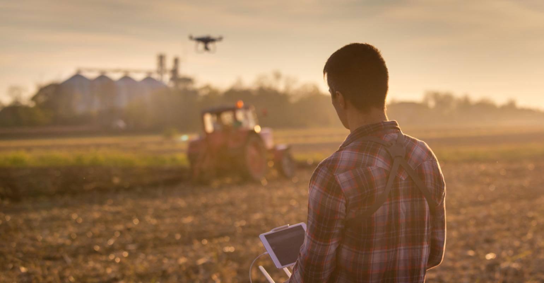 Passo a passo: aprenda a fazer o planejamento financeiro da sua fazenda