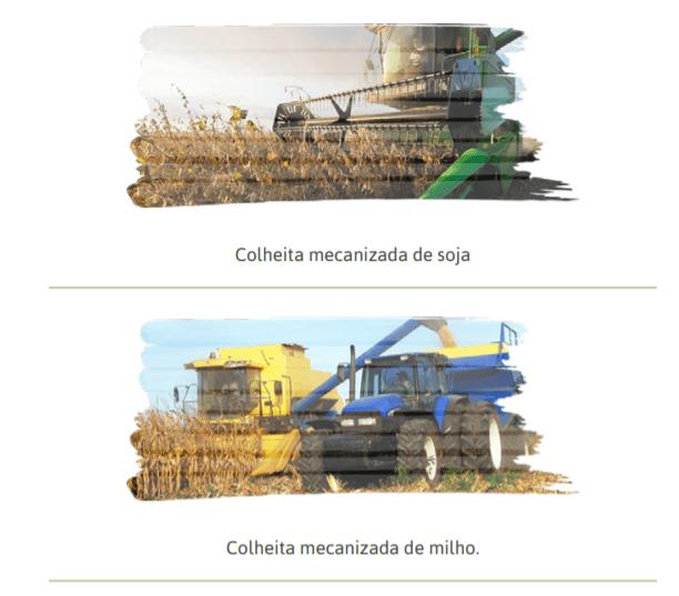 máquinas de colheita mecanizada dos grãos de soja e milho