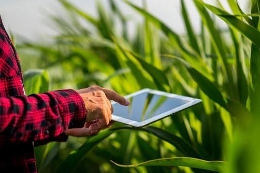 O que é Agricultura 4.0 e como ela impacta a gestão agrícola?