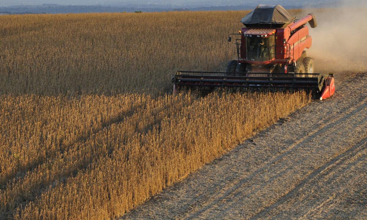 Do plantio à colheita das culturas: a importância de ficar atento aos prazos