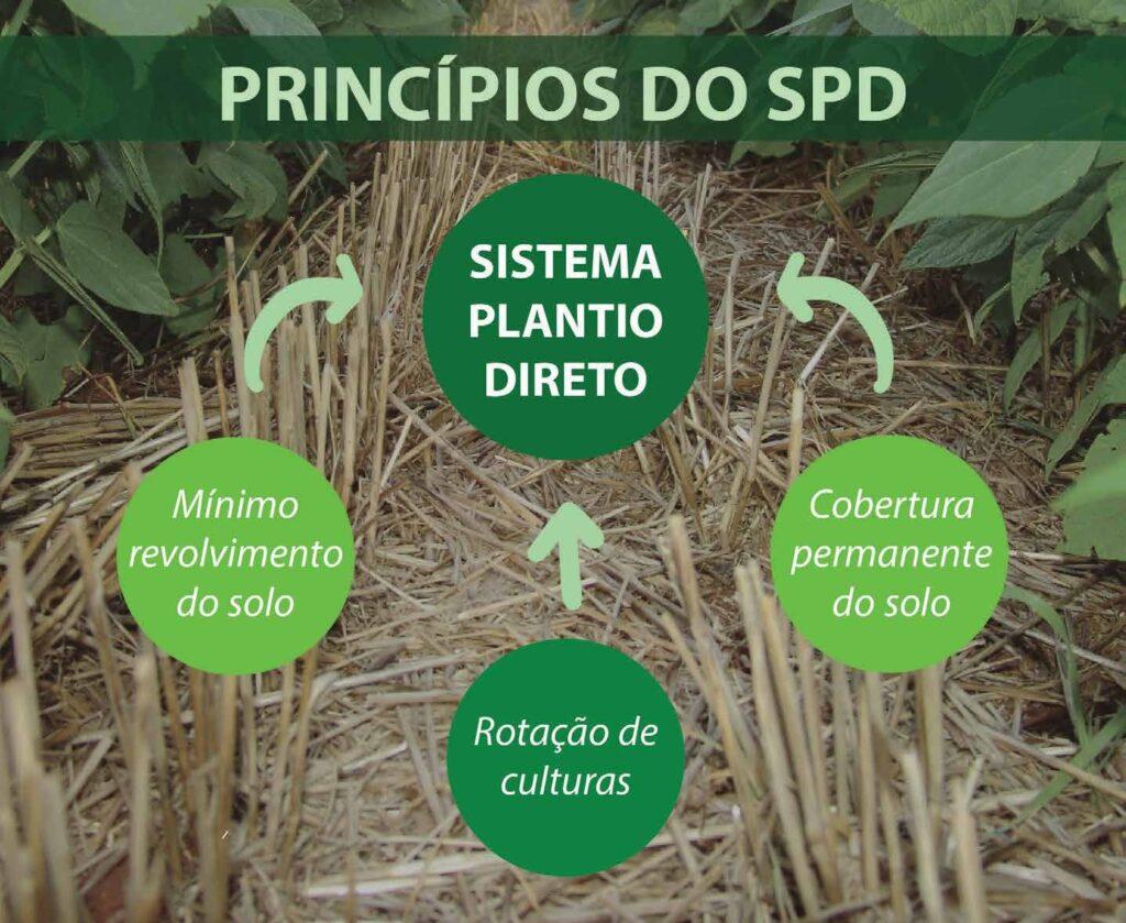 Princípios do sistema de plantio direto