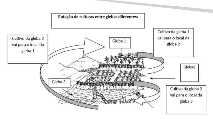 rotação de culturas em diferentes áreas