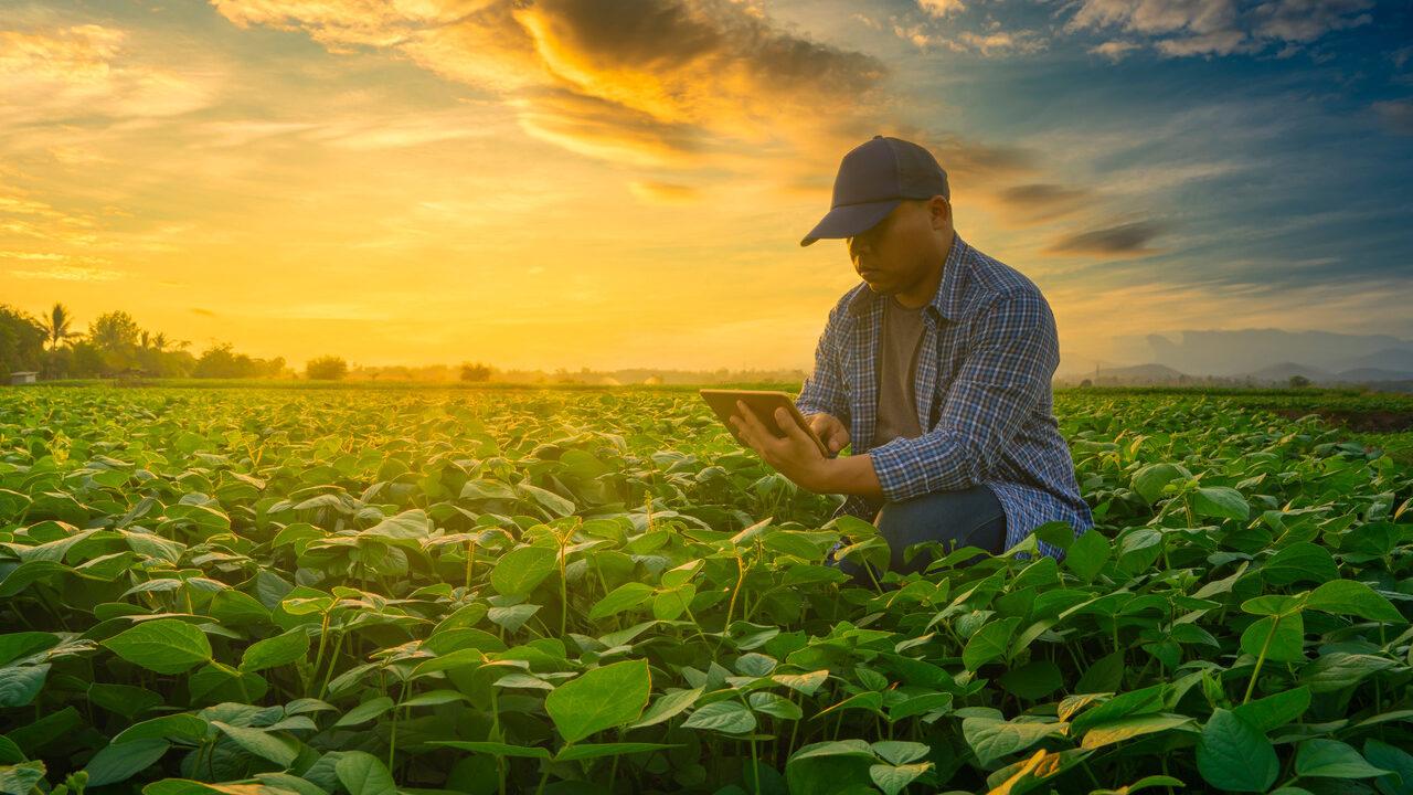 Benefícios da assinatura eletrônica e digital para o produtor rural