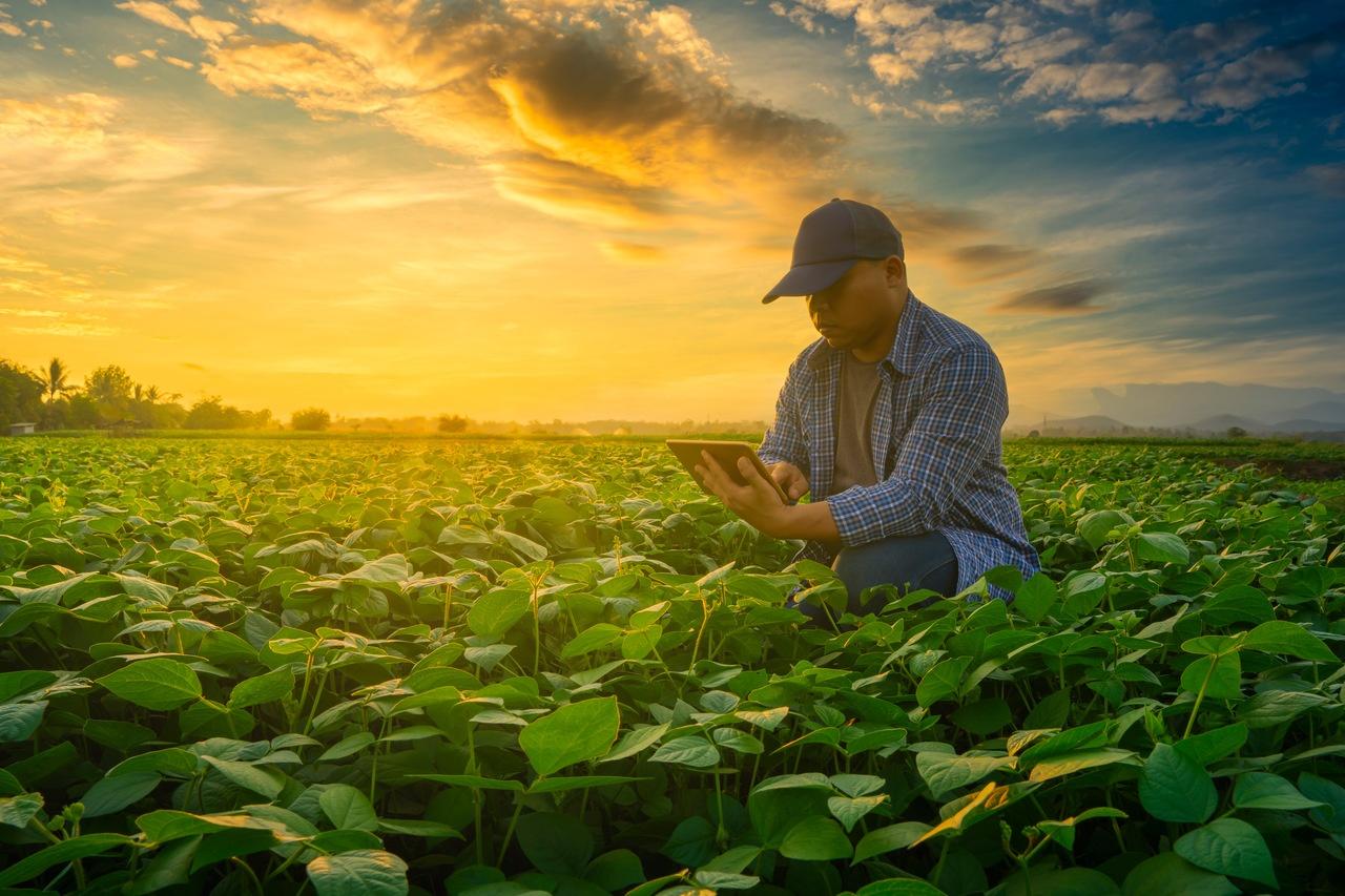 A assinatura eletrônica e digital trazem diversas vantagens para o produtor rural.