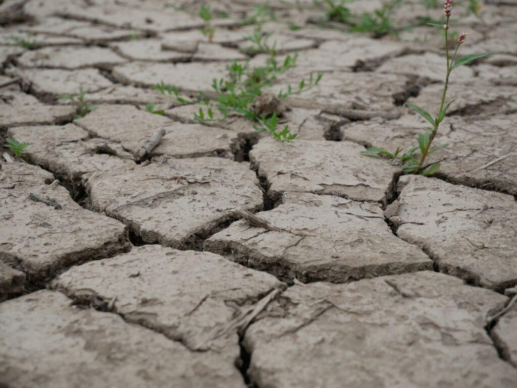 Exemplo de degradação do solo