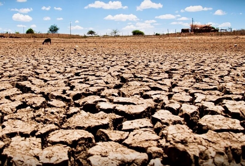 Degradação do solo: causa, impactos e consequências