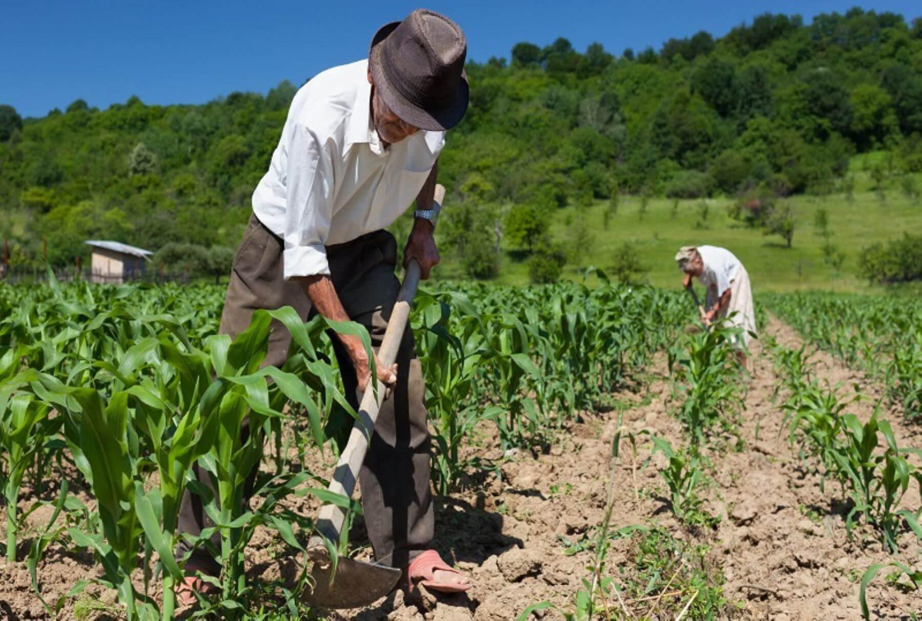 Êxodo rural: o que é, causas, consequências e os impactos no agronegócio