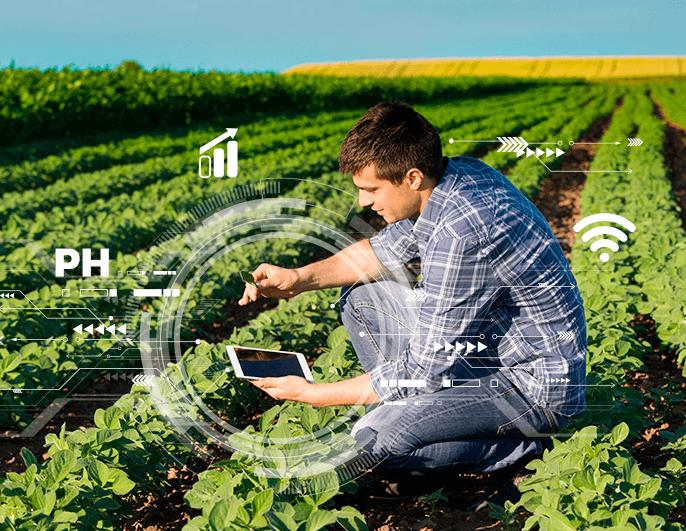 gestão do agronegócio - agricultura digital