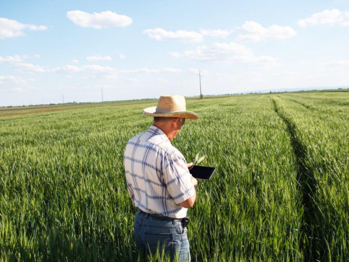 Administrador de fazenda: dicas pra você se tornar cada vez melhor