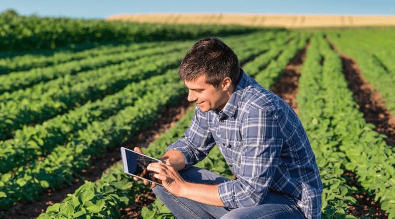 gestão da fazenda - produtor rural