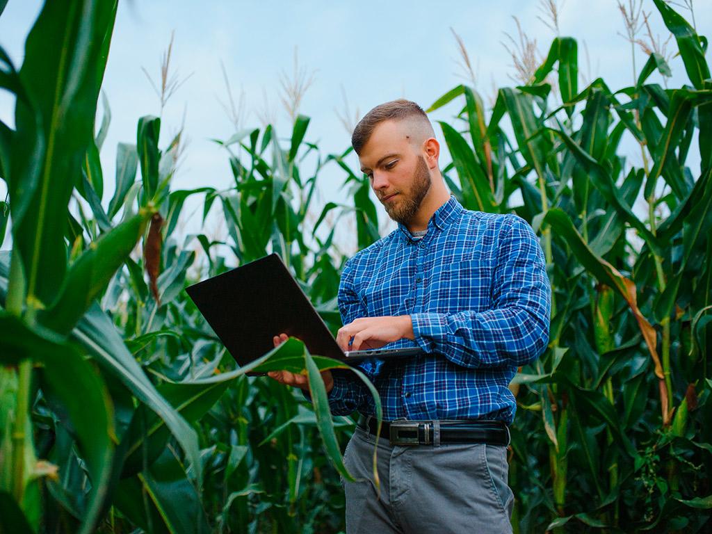 Gestão da fazenda: boas práticas para o seu negócio rural