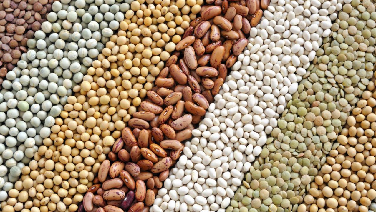 Grãos, sementes e cereais: qual a diferença?