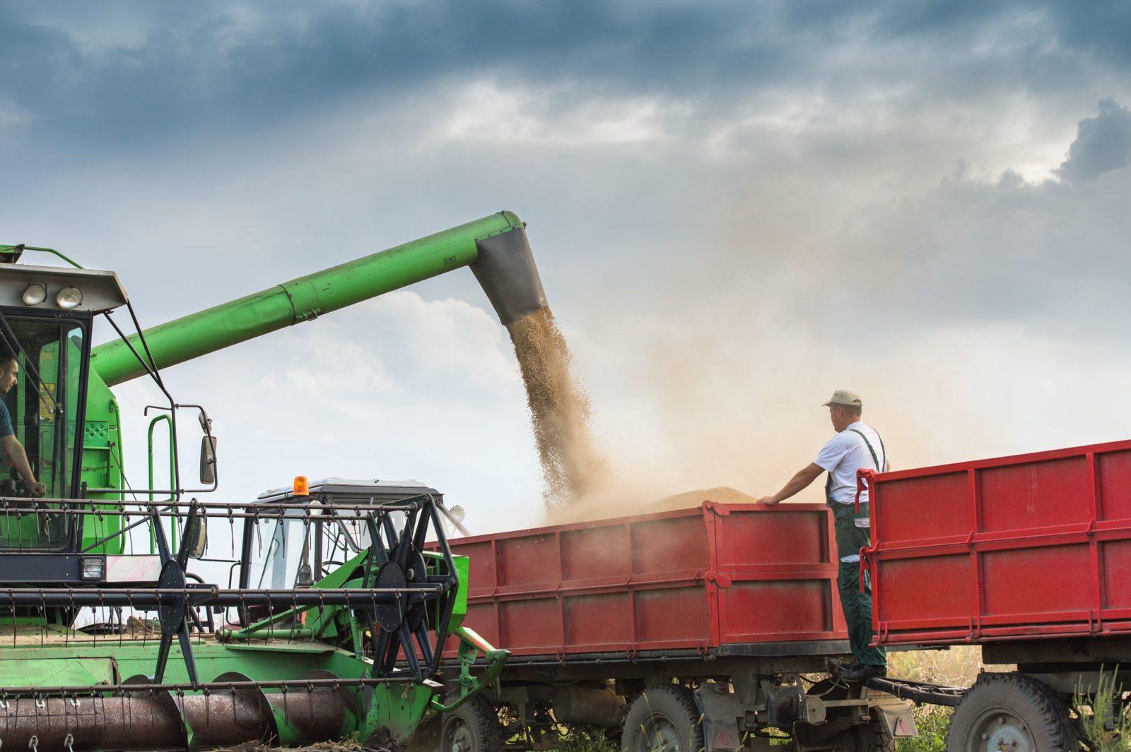 Insumos agrícolas: saiba aqui como planejar a compra
